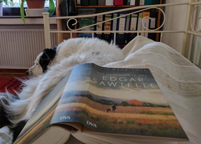 Lesen und Lieben